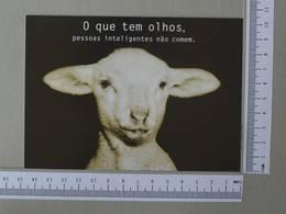 BRAZIL - O QUE TEM OLHOS -  PESSOAS INTELIGENTES NÃO COMEM -   2 SCANS    - (Nº30050) - Belo Horizonte