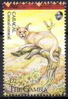 GAMBIA - 1v - MNH - Caracal - Karakal - Lynx - Cat - Cats - Félins - Felinos - Animals - Mammals - Fauna - Big Cats (cats Of Prey)