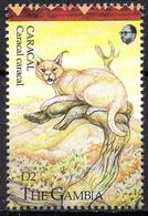 GAMBIA - 1v - MNH - Caracal - Karakal - Lynx - Cat - Cats - Félins - Felinos - Animals - Mammals - Fauna - Raubkatzen
