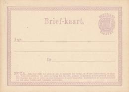 Nederland - 1871 - 2,5 Cent Wapen, Briefkaart G1 - Ongebruikt - Material Postal