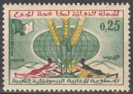N° 377 D'Algérie - X X - ( E 1091 ) - Against Starve