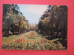 7553 Cote D'Azur PRINCIPAUTÉ De MONACO  Monte Carlo  Le Casino Et Les Jardins - Monaco