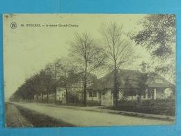 Stockel Avenue Grand-Champ - Woluwe-St-Pierre - St-Pieters-Woluwe