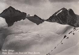 449 - Valle Spluga - Vetta Pizzo Ferrè - Italie