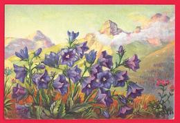 FIORI - FLOWERS - FLEURS - Flowers