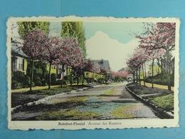 Boitsfort-Floréal Avenue Des Ramiers - Watermaal-Bosvoorde - Watermael-Boitsfort