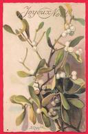 FIORI - FLOWERS - FLEURS - ILLUSTRATORE CHIOSTRI - JOYEUX NOEL - Fiori