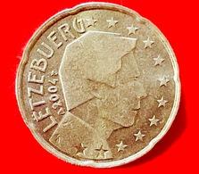 LUSSEMBURGO - 2004 - Moneta - Ritratto Del Sovrano Del Lussemburgo, Il Granduca Henri - Euro - 0.20 - Lussemburgo