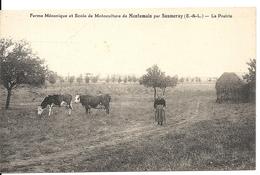 MONTEMAIN. FERME MECANIQUE ET ECOLE DE MOTOCULTURE. LA PRAIRIE - Frankrijk