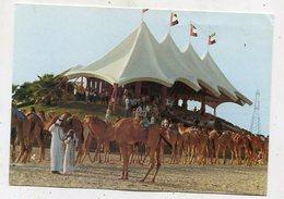 UAE - AK 357864 Dubai Camelracetrack - Dubai