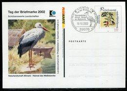 """Bundesrepublik Deutschland / 2002 / Privatpostkarte """"Altmark-Weissstorch"""", SSt. Stendal (20302) - [7] Federal Republic"""