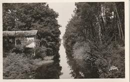 33 CAZAUX -- Le Canal - Carte Photo - France