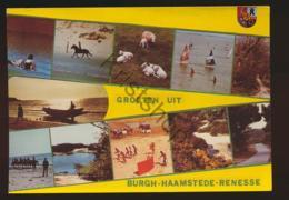 Burgh-Haamstede - Renesse  - (gelopen Met Pz) - [AA44-1.726 - Netherlands