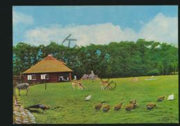 Helmond - Hertenkamp In De Warande  - (ongelopen) - [AA44-1.805 - Ohne Zuordnung