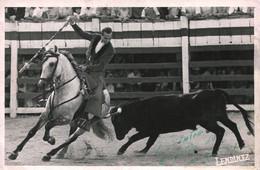 Tauromaquia Corrida Bullfighting - Bullfighter On Horseback And Bull Cheval Et Taureau Original Photo Signed 17x12 1950' - Personas Identificadas