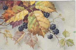 AK 0287  Herbstlaub ( Beeren ) - Stilleben Um 1910-20 - Bäume