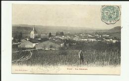 52 - Haute Marne - Curel - Vue Générale- Vigneron Dans Ses Vignes  - Réf.vvl - Francia