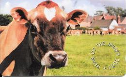 CARTE-MAGNETIQUE-JERSEY-2001-VACHE-TBE - Vaches