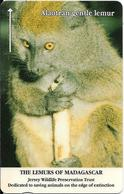 CARTE-MAGNETIQUE-JERSEY-2£-LEMURIEN  ALAOTRAN GENTLE-Fondation JERSEY WILDLIFE -TBE - Jungle