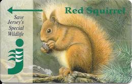 CARTE-MAGNETIQUE-JERSEY--2£-ECUREUIL-RED SQUIRREL-TBE - Télécartes