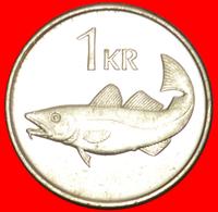+ GREAT BRITAIN FISH (1989-2011): ICELAND ★ 1 KRONE 2003 MINT LUSTER! LOW START ★ NO RESERVE! - Islandia