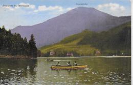 AK 0288  Erlaufsee Bei Mariazell Gegen Gemeindealpe - Verlag Kuss-Radinger Um 1926 - Mariazell
