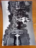 FIRENZE Giardino Dei Boboli Piazzale Dell'Isolotto  VIAGGIATA Nel 1955 ANIMATA - Firenze