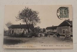 Ancienne Carte Postale - Le Grand Virey - Avenue De La Mouillière - Monp - Unclassified