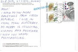 25C : Czech Republic Soldier Stamp Used On Clasterec Nad Ohri Night View Postcard - Czech Republic