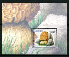 TADJIKISTAN 1999 Bloc N° 21 ** Neuf MNH  Superbe Flore Champignons Morchella Steppicola Musrooms Flora - Tajikistan
