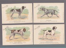 Races De Chiens / Lot  11 CP / Chocolat Louit / Griffon, Retriewer, Braque, Briquet, Epagneul, Clumber, Foxhound, - Chiens