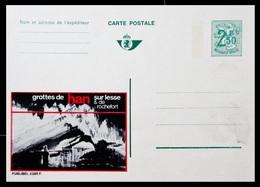 BELGIQUE ENTIER CP PUBLIBEL N° 2385F . GROTTES DE HAN .   . NEUF - Stamped Stationery