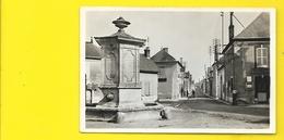 AMBONNAY Place De La Fontaine (Michel) Marne (51) - Autres Communes