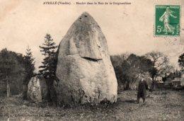 Avrillé : Menhir Dans Le Bois De La Guignardière - Frankrijk