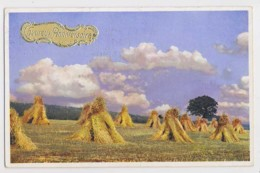 AI79 Greetings - Heureux Anniversaire, Field With Haystacks - Slogan Postmark - Birthday