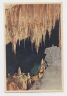 AI79 Cuevas Del Drach, Manton Chinesco - Mallorca