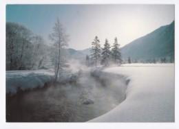 AK41 Winterlandschaft Nahe Ettal, Bayern - Germany