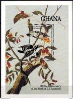 GHANA - Oiseaux : Picoides Pubescens - Pic Mineur - Verzamelingen, Voorwerpen & Reeksen