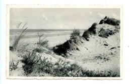 Coq Sur Mer - Den Haan Aan Zee - La Dune, Ourlet De La Mer - De Haan