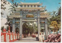 °°° 13463A - SINGAPORE - IL GIARDINO DELLE TIGRI °°° - Singapore