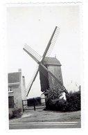 HEYST - Knokke-Heist - Kleine Foto 11 X 6,5 Cm - Thiels Molen - Afgebroken Door Duitse Soldaten In 1944 - Heist