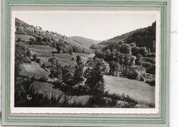 CPSM Dentelée - WISEMBACH (88) - Aspect De La Vallée Et Des Sous-bois Du Village Dans Les Années 50 / 60 - Frankreich