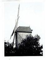 ZANDVOORDE Bij Oostende - Kleine Foto 8,5 X 6,3 Cm - Lijster Molen - Gesloopt - Oostende