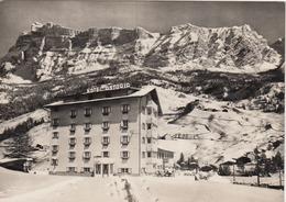 LA VILLA-BELLUNO-HOTEL=ASTORIA=-NON VIAGGIATA ANNO 1955-1960 - Bolzano