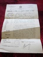WW1-1918-DICHIARAZIONE DI REFORMA DI UN INSCRITTO RESIDENTE ALL' ESTERO CONSUL GENERAL ITALIE à TOULON Doc Ghiso Lorenzo - Documenti
