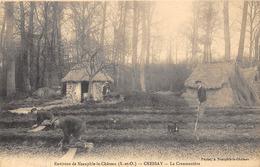 78-CRESSAY- LA CRESSONNIERE- ENVIRONS DE NEAUPHLE-LE-CHATEAU - Autres Communes