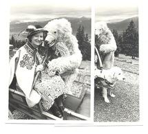Lot De 2 Photos ( Grandeur Carte Postale ) ZAKOPANE ( Pologne / Polska ) Photo Surréaliste , Dame Avec Un Ours .(b256) - Places