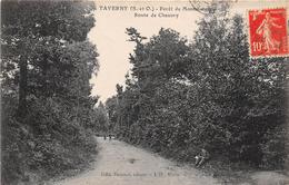 TAVERNY - Forêt De Montmorency - Route De Chauvry - Taverny