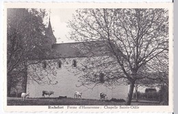Rochefort Cpsm  Ferme D'Hamerenne  Chapelle Sainte-Odile - Rochefort