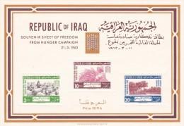 Irak Hb 4 Mancha En La Goma - Irak